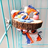 Rubyyouhe8 Bird Accessories&Round Wooden Stand Platform Parrot Toy Bird Pet Bite Chew Cage Hangings Decor Colorful Bird Parrot Toys Hanging Toy for Parakeets Cockatiels Small Pet