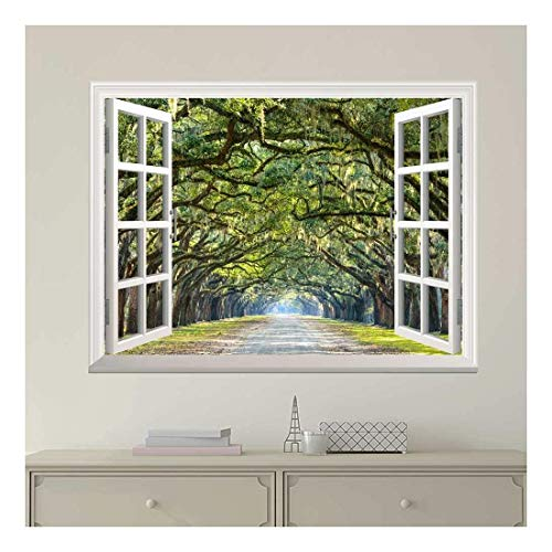 White Window Looking Out Into a Road with a Tunel of Trees Wall Mural