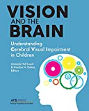 img - for Vision and the Brain: Understanding Cerebral Visual Impairment in Children book / textbook / text book