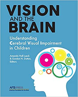 Vision And The Brain: Understanding Cerebral Visual Impairment In Children por Amanda Hall Lueck