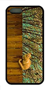Hot iPhone 5S Customized Unique Print Design Red Cat On Fence New Fashion PC White iPhone 5/5S Cases