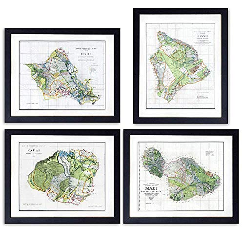 - Hawaii Survey Maps - Unframed Wall Art Prints - Set of Four - Perfect Gift for Map Fans - Great Office or Home Decor - Ready to Frame (8X10) Vintage Photos