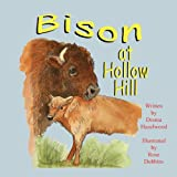 Bison at Hollow Hill, Drema Hazelwood, 1936352672