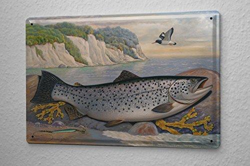 LEotiE SINCE 2004 Tin Sign Metal Plate Decorative Sign Home Decor Plaques Scholz Fish sea Trout Marine Fish Predators Predatory Fish Fishing 20x30 -