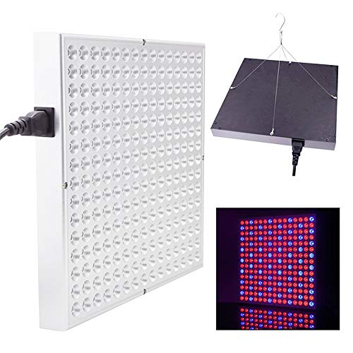 Xiaochao Plant Grow Light 225 LEDs 45W Full Spectrum Plant Lamp with Red Blue Orange White Light for Indoor Plant Growing Hydronics Vegetable and Flower,UK