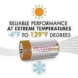 Tenergy 1.5V C Alkaline LR14 Battery, High