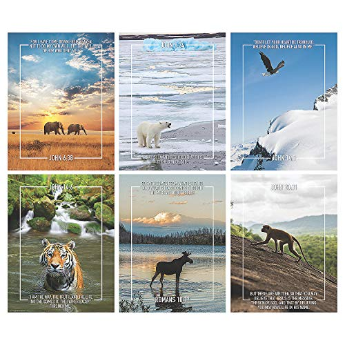 Fun Express - Wild Encounters Vbs Poster Set - Educational - Learning Aids - Learning Charts - 6 Pieces -
