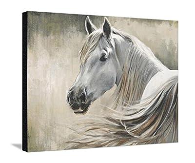 Canvas Print Wall Art 'Kentucky' by Sydney Edmunds, 30x40 in