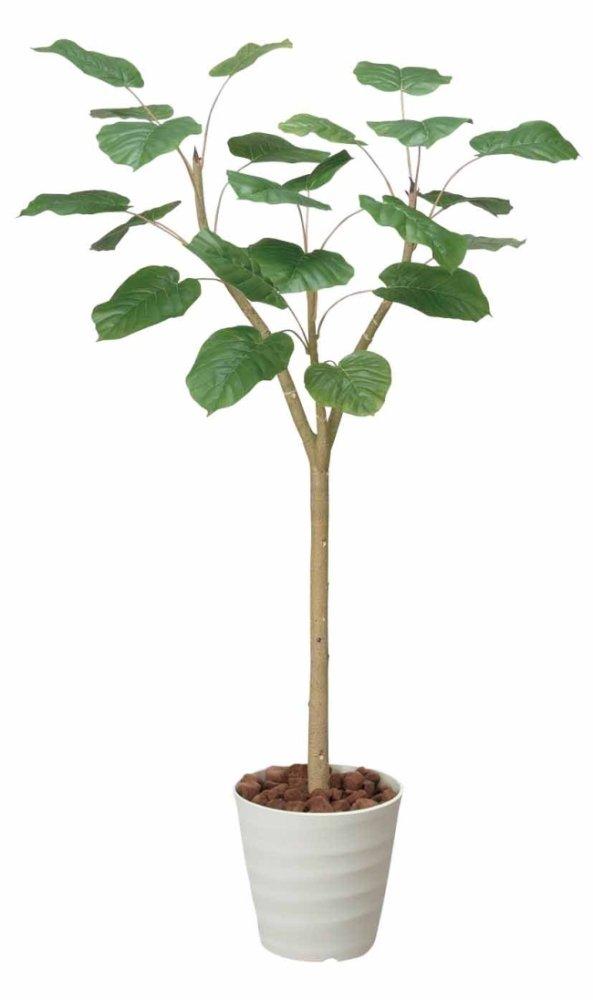 光触媒 ウンベラータ1.8m【人工観葉植物】 B077S925SK
