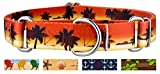 Country Brook Design | Caribbean Sunset Martingale Dog Collar - Medium