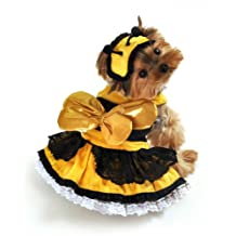 Anit Accessories Honey Bee Dog Costume, X-Small, 8-Inch