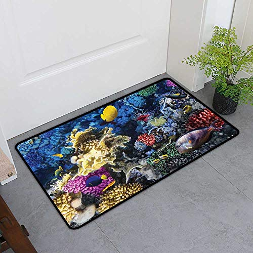 TableCovers&Home Magic Doormat, Ocean Indoor Out-Imdoor Rugs for Kids Room, Colorful Coral Reef and Fishes Colony in Red Sea Egypt Africa Underwater Life Image (Multicolor, H24 x W36)