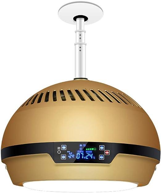 WETRR Purificador de Aire para el hogar con Ascensor lámpara ...