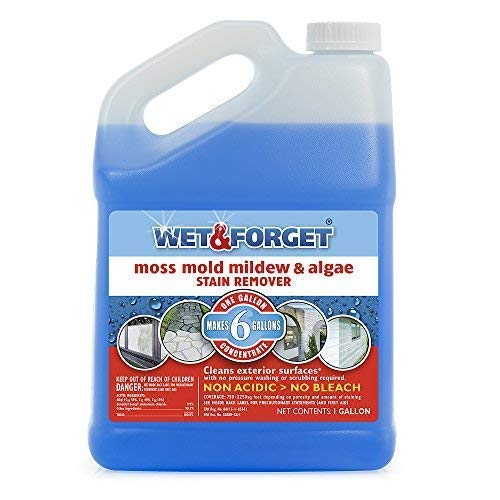Wet and Forget 10587 1 Gallon Moss, Mold and Mildew Stain Remover by WET & FORGET