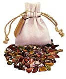 Animal Power Pouch Healing Crystals Stones Set with XS Tumbled Polished Natural Mineral Gemstones (Animal)