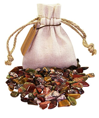 Animal Power Pouch Healing Crystals Stones Set with XS Tumbled Polished Natural Mineral Gemstones (Animal) by Blue Water Crystals