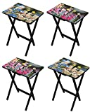 Birds and Flowers TV Tray Tables, Set of 4