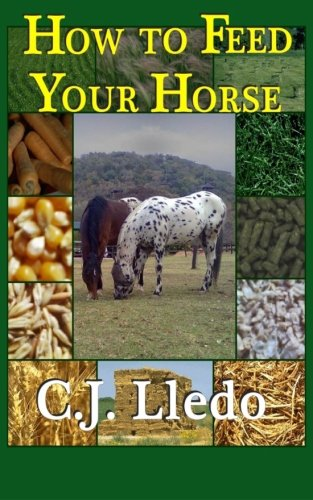 How To Feed Your Horse
