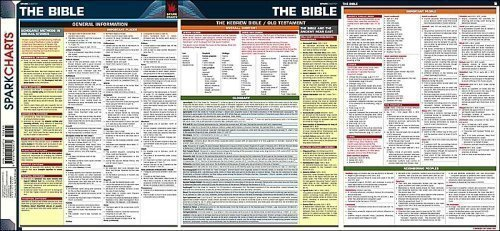 The Bible SparkCharts