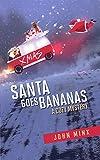 Free eBook - Santa Goes Bananas