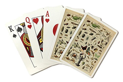 Insects - Vintage Bookplate - Adolphe Millot Artwork (Playing Card Deck - 52 Card Poker Size with Jokers) (Insect Playing Cards)