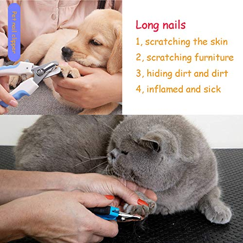 AOAMEET 4 pcs Pet Grooming Tool Kit (Fine-tooth Comb,Pet Grooming Brush, Pet Nail Clippers, File) for Dog Cat by AOAMEET (Image #7)'