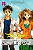 Neon Genesis Evangelion: Angelic Days, Vol. 6