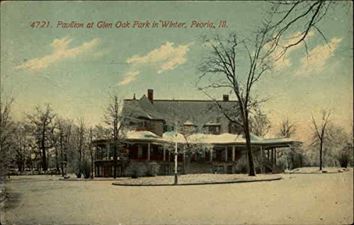 Pavillion at Glen Oak Park in Winter Peoria, Illinois Original Vintage Postcard (Park Oaks Winter)