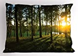 Lunarable Forest Pillow Sham, Sunset in The Woods Theme Autumn and River Comes into View at Distances, Decorative Standard Size Printed Pillowcase, 26 X 20 inches, Dark Green and Yellow
