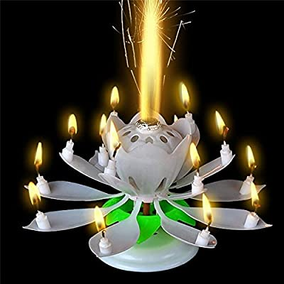Sinfore 1pcs Amazing Two Layers With 14 Small Candles Lotus Happy Birthday Spin Singing Romantic Musical Flower Party Light Intelligent Decorative Cake
