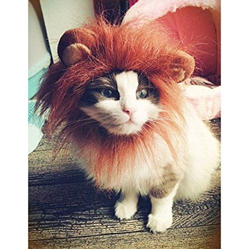 Lion's Mane Costume Wig (Wotefusi Halloween Fashion Pet Dog Cat Lion Wigs Mane Hair with ears Festival Fancy Costume size S)