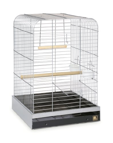 Prevue Pet Products 125C Parrot Cage, Chrome by Prevue Pet Products