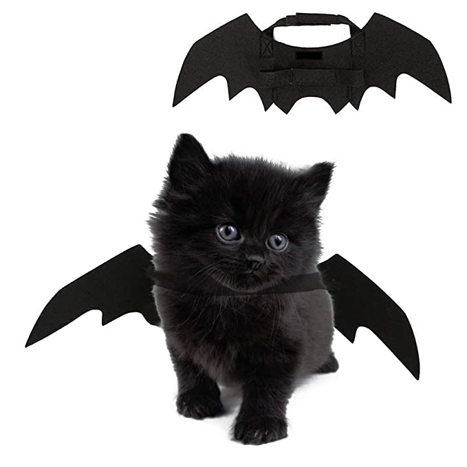 b535831c8 Amazon.com : MUTOCAR Cat Costume Cute Bat Wings Pet Costumes Pet Apparel  Small Dogs Cats : Pet Supplies