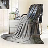 YOYI-HOME Duplex Printed Blanket Comfort Warmth SoftStreaming Through Stained Glass Window Ancient Palace Castle Grey Cream White Anti-Static,2 Ply Thick,Hypoallergenic/W47 x H59