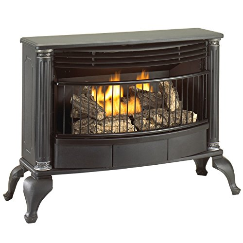 Cedar Ridge Hearth Vent-Free Natural Gas or Liquid Propane Gas Stove - 25,000 BTU, T-Stat, Model - Direct Vent Gas Fireplace Propane