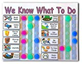 Daily Schedule for Multiple Kids, 2 to 3 Kids, You Choose Title, Colors, and 15 Chores/Behaviors/Activities, Mark Completed Chores with the Colored Tokens