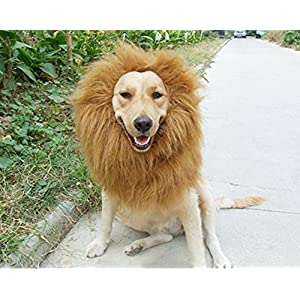 Dog Lion Mane Wig-Light Brown Adjustable Comfortable Funny Wig with Ears for Dog Costume Pet Fancy Hair Clothes Dress…