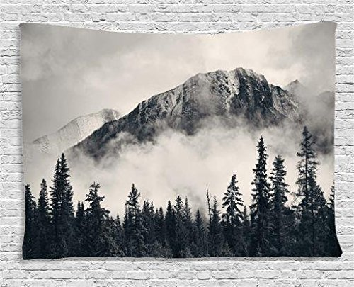 Ambesonne National Parks Home Decor Tapestry by, Canadian Smokey Mountain Cliff Outdoor Idyllic Photo Art, Wall Hanging for Bedroom Living Room Dorm, 80WX60L Inches, Black and White