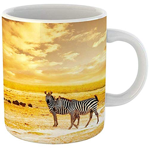 - Coffee Tea Mug Gift 11 Ounces Funny Ceramic African Safari Zebras Family and Landscape of Amboseli National Park Kenya Wild Gifts For Family Friends Coworkers Boss Mug