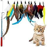 لعبة الريشة التفاعلية بعصا لجذب انتباه القطط، تتكون من عصا واحد و7 ملحقات ريش الطيور والدود للقطط الصغيرة