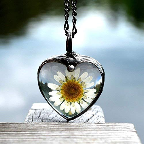 (Pressed Flower Necklace Large Real Daisy Heart Jewelry Glass Not Resin Wont Yellow Handmade Pendant 2553f )