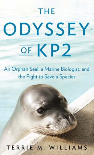 Books : The Odyssey of KP2: An Orphan Seal, a Marine Biologist, and the Fight to Save a Species (Thorndike Press Large Print Nonfiction)