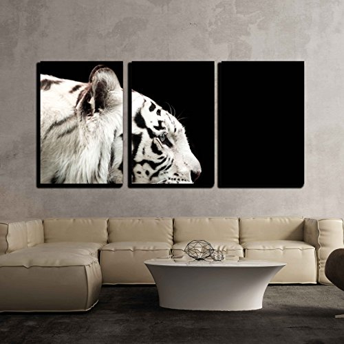 wall26 - 3 Piece Canvas Wall Art - Profile of Bengal White Tiger on a Black Background - Modern Home Decor Stretched and Framed Ready to Hang - 16