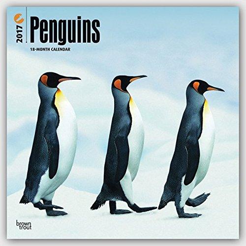 Penguins 2017 Square (Multilingual Edition)