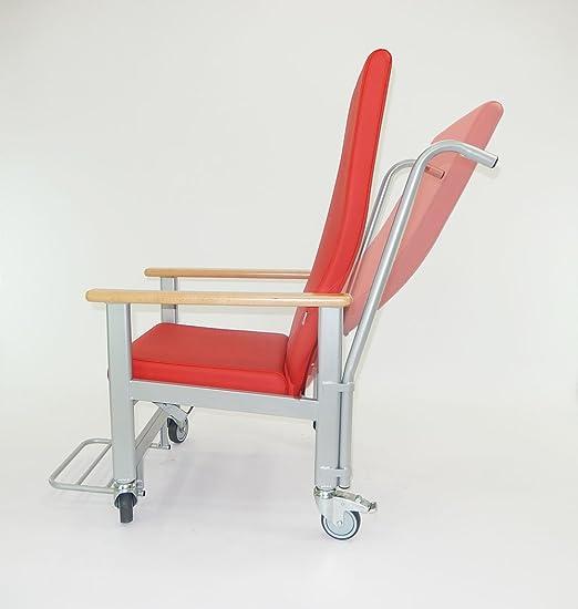 tagar Sillón geriátrico de Ruedas reclinable: Amazon.es: Hogar