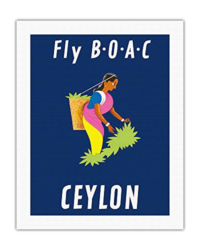 Ceylon Sri Lanka - Boac - Sri Lankan Tea Picker - Vintage Airline Travel