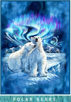 Royal Mink Blanket - Royal Plush Extra Heavy Queen Size Mink Blanket - Polar Bears and Northern Lights (79
