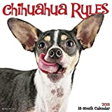 Chihuahua Rules 2018 Wall Calendar (Dog Breed Calendar)