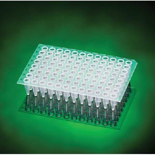 Scientific Specialties 3435-40S Full Skirt One-Notch 384-well PCR Plate Pack of 100 Inc. White