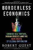 Borderless Economics, Robert Guest, 0230113826